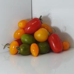Tomate Cerise Mélimélo