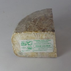 Tomme aux orties dyonisienne