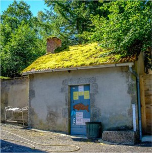 Pisciculture Moulin Goutaudier