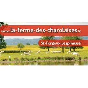 La ferme des Charolaises